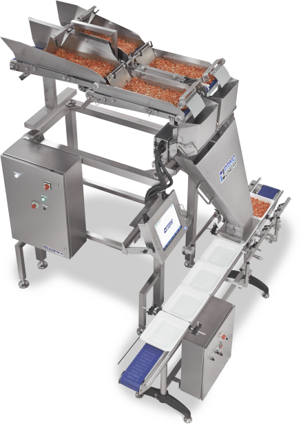 Beef Jerky Packaging Machine - weigh machine